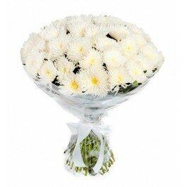Хризантемы Чик 25 штук