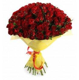Роза кустовая Рубикон 51 штук